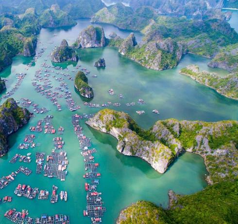 Excursions dans la baie de Lan Ha